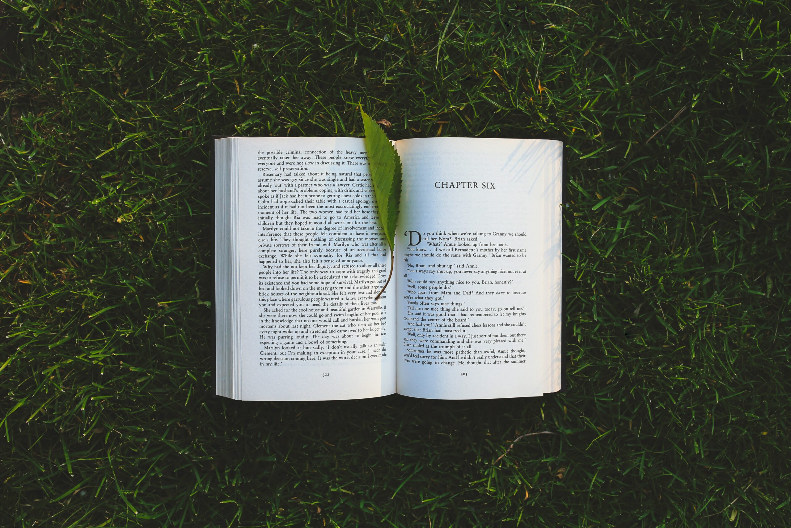 "A book in the grass opened to ""chapter six"" with a leaf bookmark"